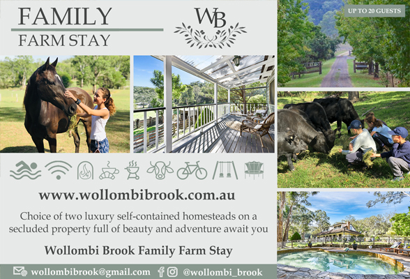 Wollombi Brook
